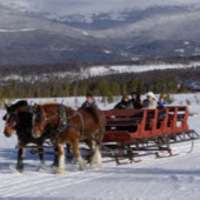 Horse drawn sleigh at Dog Sled Rides of Winter Park